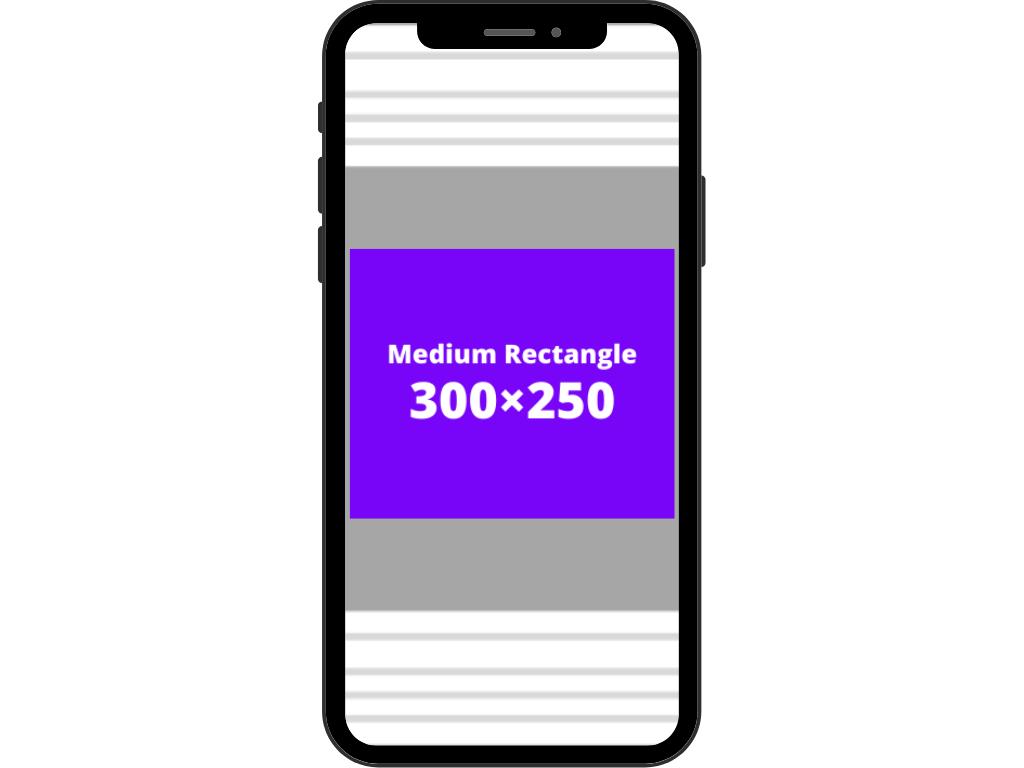 Medium rectangle (300×250)